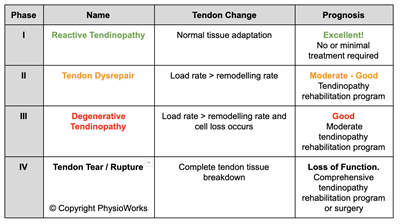 Achilles Tendinopathy Physio Works